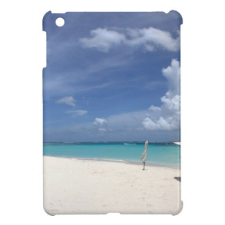Flamenco Beach Culebra Puerto Rico iPad Mini Cases