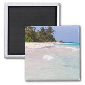 Flamenco Beach Culebra Puerto Rico Refrigerator Magnet
