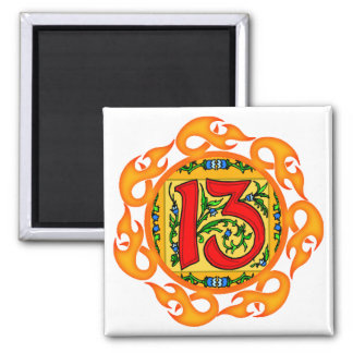 Flaming 13th Birthday Gifts Square Magnet