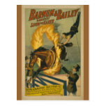 Flaming Horse Circus Poster Postcards