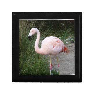 Flamingo #2 gift box