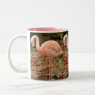 Flamingo 3 Photo Mug