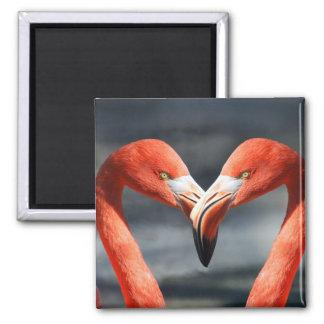 Flamingo bird couple fridge magnet