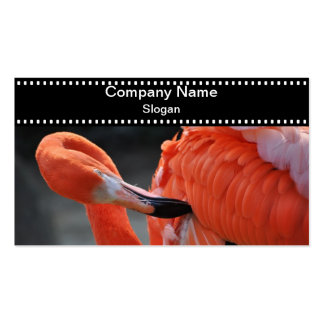 Flamingo -  Business Card Standard Business Cards