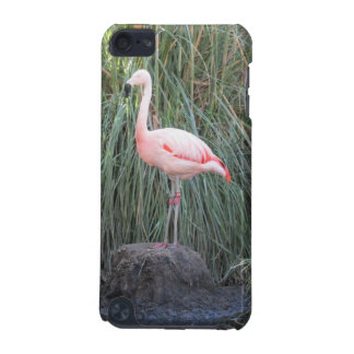 Flamingo iPod Touch (5th Generation) Case