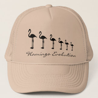 Flamingo Evolution Funky Hat / Cap