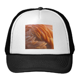 Flamingo Feathers Mesh Hats