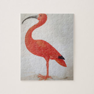 Flamingo - Fine Art Jigsaw Puzzle
