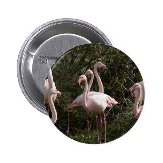 Flamingo Flock 6 Cm Round Badge