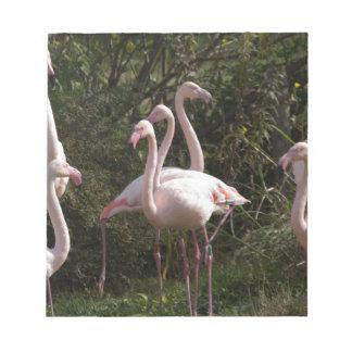 Flamingo Flock Notepad