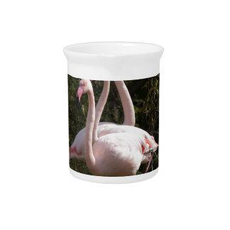Flamingo Flock Pitcher