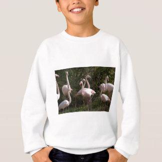 Flamingo Flock Sweatshirt