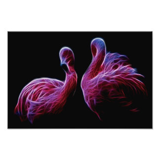 Flamingo Fractal Photograph