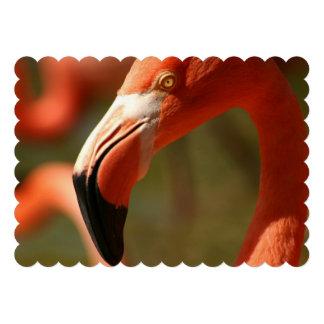Flamingo Custom Invites
