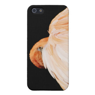 Flamingo iPhone 5/5S Covers