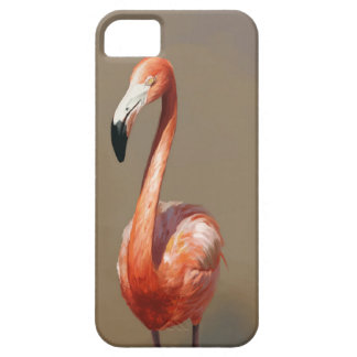 Flamingo iPhone 5 Covers