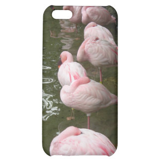 Flamingo iPhone 5C Cover