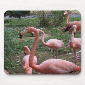 Flamingo Mousepad