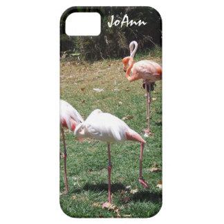 Flamingo Photograph iPhone 5 Case