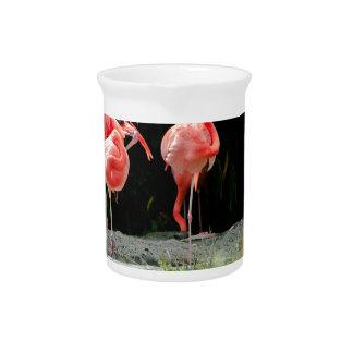 flamingo pitcher