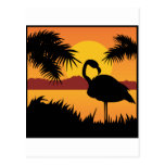 Flamingo Post Cards