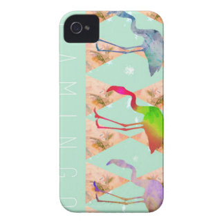 Flamingo Road iPhone 4 Case-Mate Case