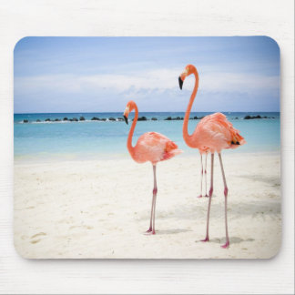 Flamingo Stroll Mouse Mat