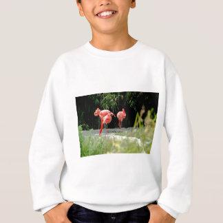 flamingo sweatshirt