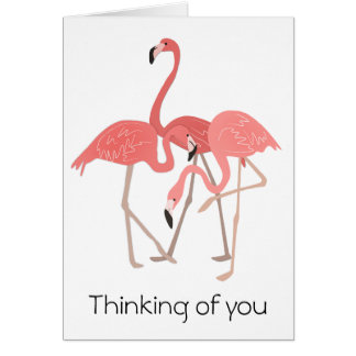 Flamingo Trio Thinking of You Card