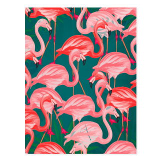 flamingo tropic postcard