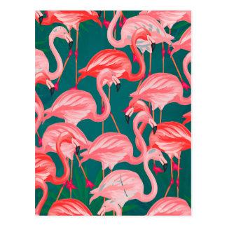 flamingo tropic postcard