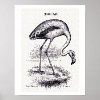 """""""Flamingo"""" Vintage Illustration Poster"""