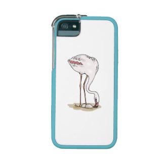 Flamingo With Eggs iPhone 5/5S Cases