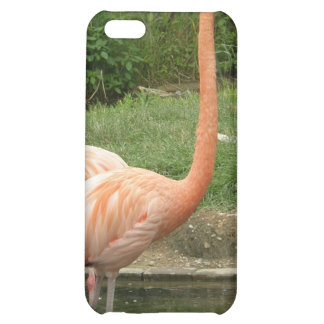 flamingoes cover for iPhone 5C