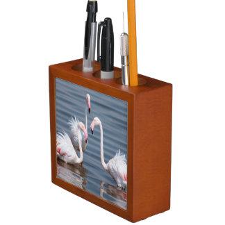 Flamingoes (Phoenicopteridae). Walvis Bay Desk Organiser