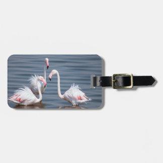 Flamingoes (Phoenicopteridae). Walvis Bay Luggage Tag