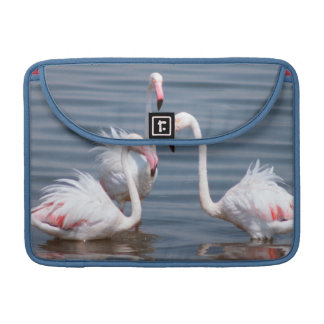 Flamingoes (Phoenicopteridae). Walvis Bay Sleeve For MacBook Pro