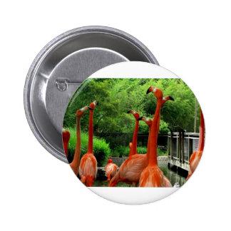 Flamingos 6 Cm Round Badge