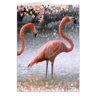Flamingos and waterfall greeting card