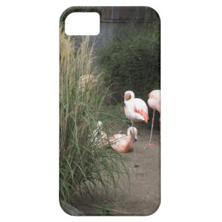 Flamingos Barely There iPhone 5 Case