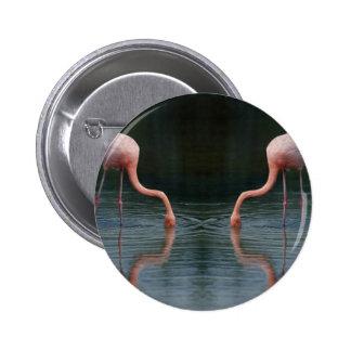 Flamingos Button