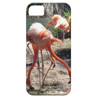 Flamingos! Case For The iPhone 5