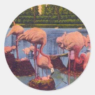 Flamingos Classic Round Sticker