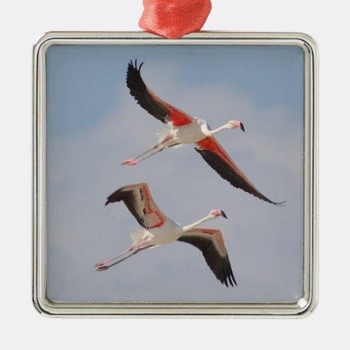 Flamingos in Flight Ornament