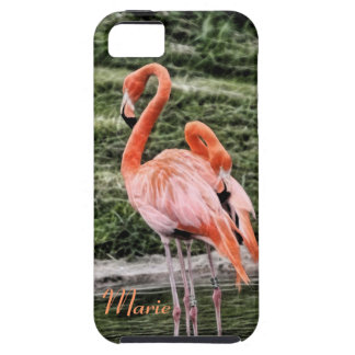Flamingos iPhone 5 Cases