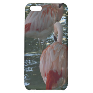 Flamingos Cover For iPhone 5C