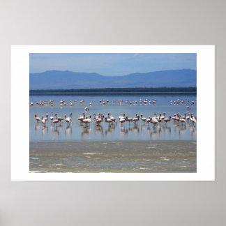 FLAMINGOS ON LAKE IN KENYA PRINT