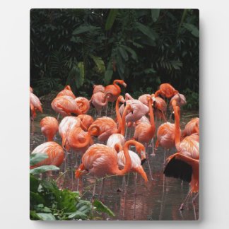 Flamingos Plaque