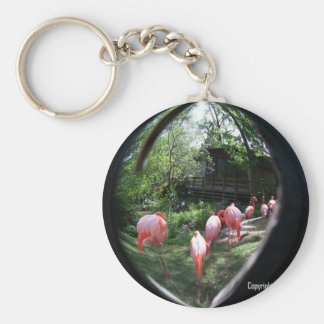 Flamingo's Tear Drop.JPG Key Ring