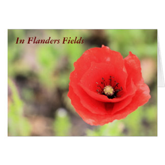 Flanders fields poppy photo and poem card